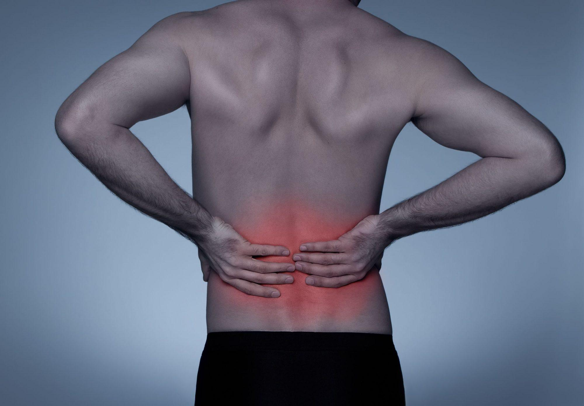 80% of Americans Experience Back Pain, But 100% of PTs Know How to Prevent It!